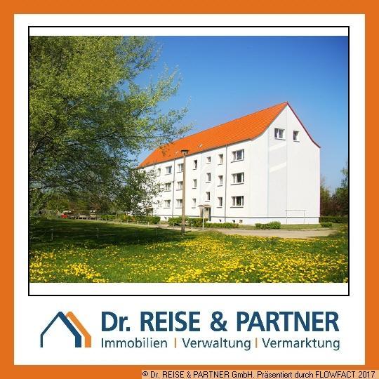 Freundliche 3 Raum-Wohnung in Panitzsch!